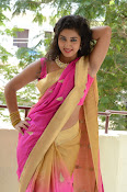 pavani new photos in saree-thumbnail-14
