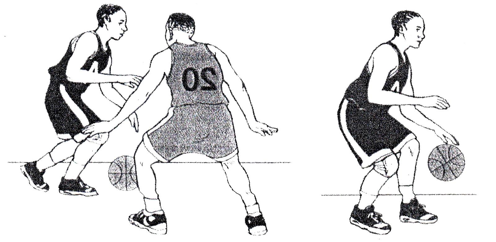 Pengertian Dribbling Dalam Bola Basket Beserta Cara Melakukannya Penjasorkes