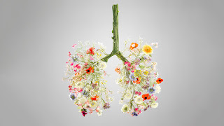 carbon-less-health-system