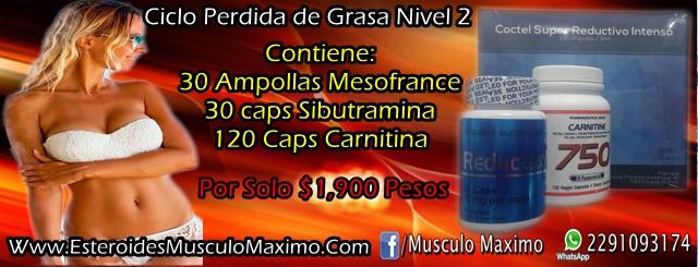 Ciclo Perdida de Grasa nivel 2- precio ( $1,900 pesos