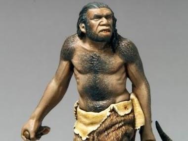 Jenis Manusia Purba di zaman Praaksara Indonesia