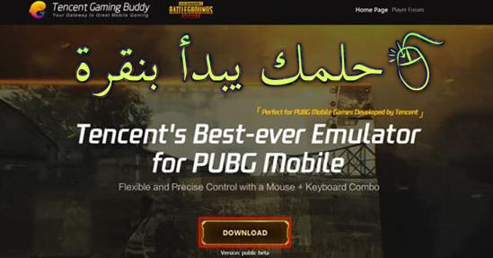 لعبة pubg للكمبيوتر بدون محاكي