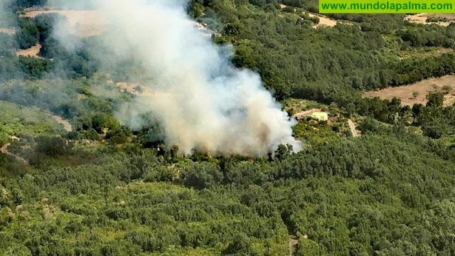 Alerta por Riesgo de Incendios Forestales en El Hierro, La Gomera, La Palma, Tenerife y Gran Canaria