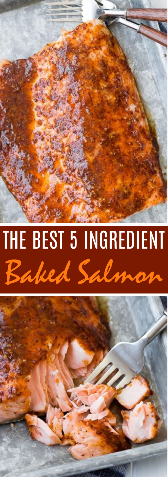 The Best 5 Ingredient Baked Salmon #dinner #seafod #fish #baked #easy