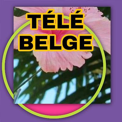 Fréquence chaîne belge Astra 19,2°  en 2020