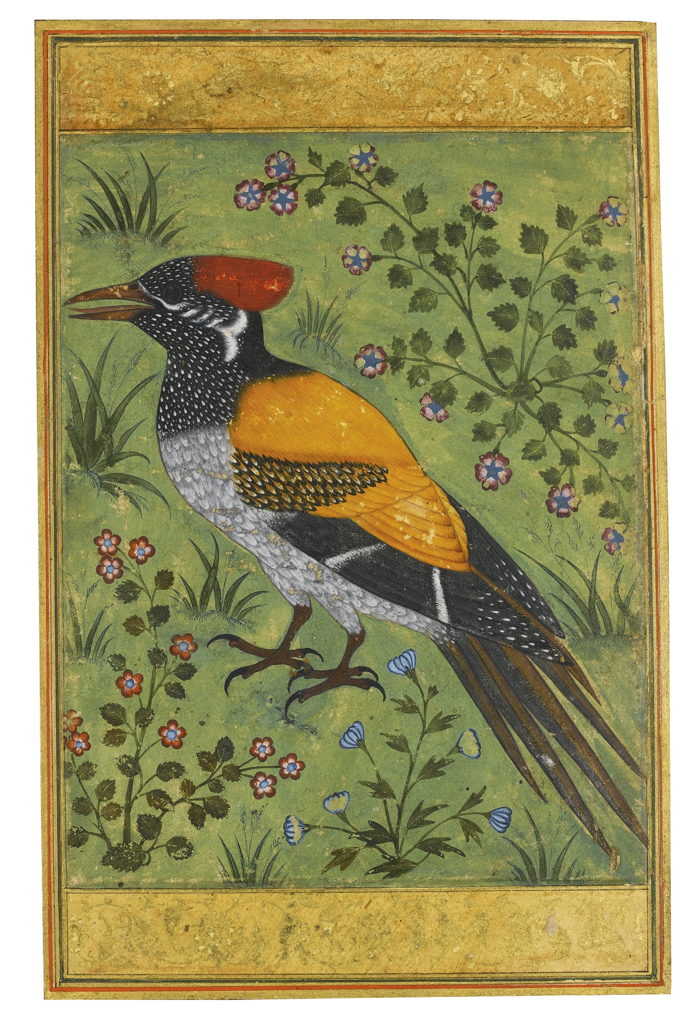 A Yellow-Backed Woodpecker, attributed to Mansur - Mughal Miniature Painting, circa 1585-90