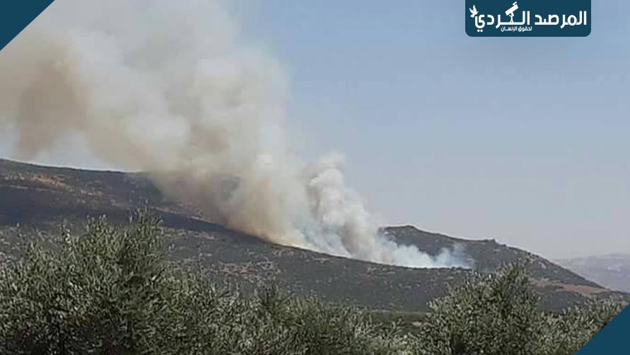 حرق أكثر من 4 آلاف شجرة في أسبوع بعفرين على يد الميلشيات الإرهابية
