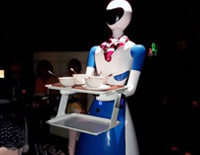 Robots Serve Food at Chennai Restaurant
