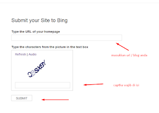 Bing Submit Url