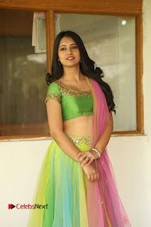 Actress Nikitha Bisht Stills in Lehenga Choli at Pochampally Ikat Art Mela Launch  0009.JPG