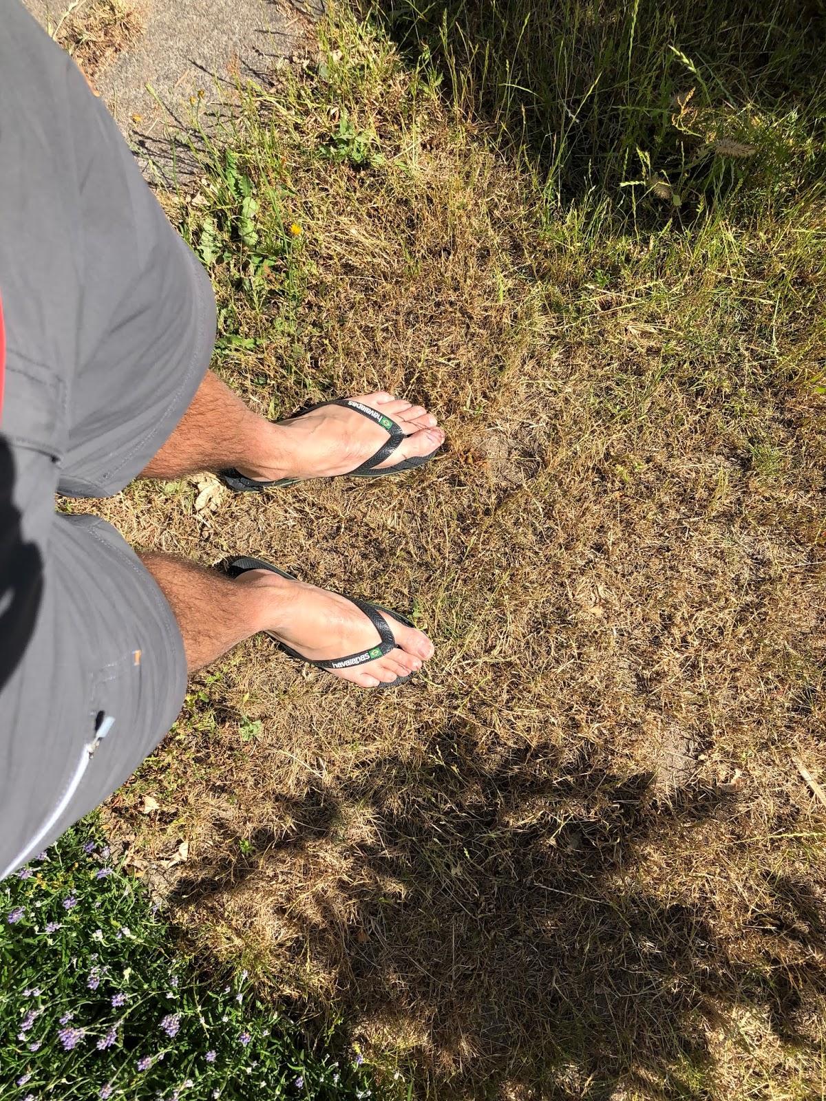 droogte 2020 moestuin volkstuin slippers gras