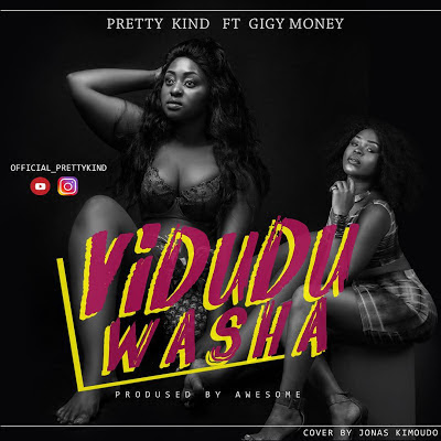 Pretty Kind Ft Gigy Money - Vidudu Washa