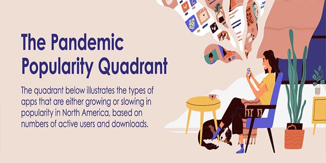 The Pandemic Popularity Quadrant
