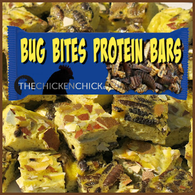 Bug Bites™ are a phenomenal source of protein and calcium for molting chickens!