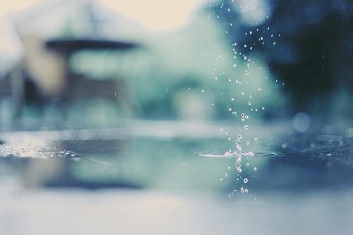Tâm Sự: Một Mùa Mưa Nữa Đang Đổ Sập Xuống Thành Phố Này…