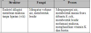 Jawaban e No 3 Asesment Biologi SMA Latihan (UN) Program IPA (Bagian 2)