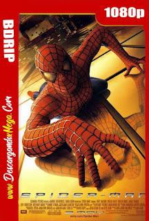 El Hombre Araña (2002) BDRip 1080p Latino-Ingles