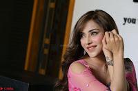 Angela Krislinzki Rogue Movie Fame Telugu Actress in Saree Backless Choli 002.JPG