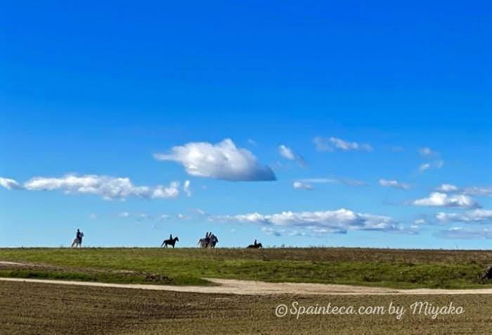 マドリードの青い空の下で乗馬をしている様子