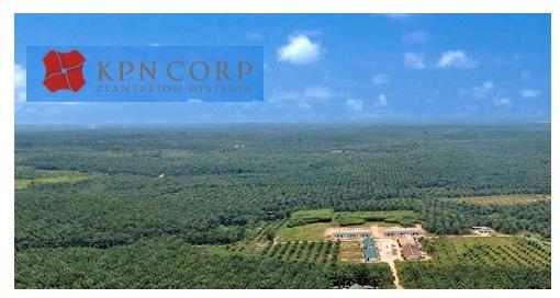 Lowongan Kerja KPN Corp Plantation Division Juni 2020