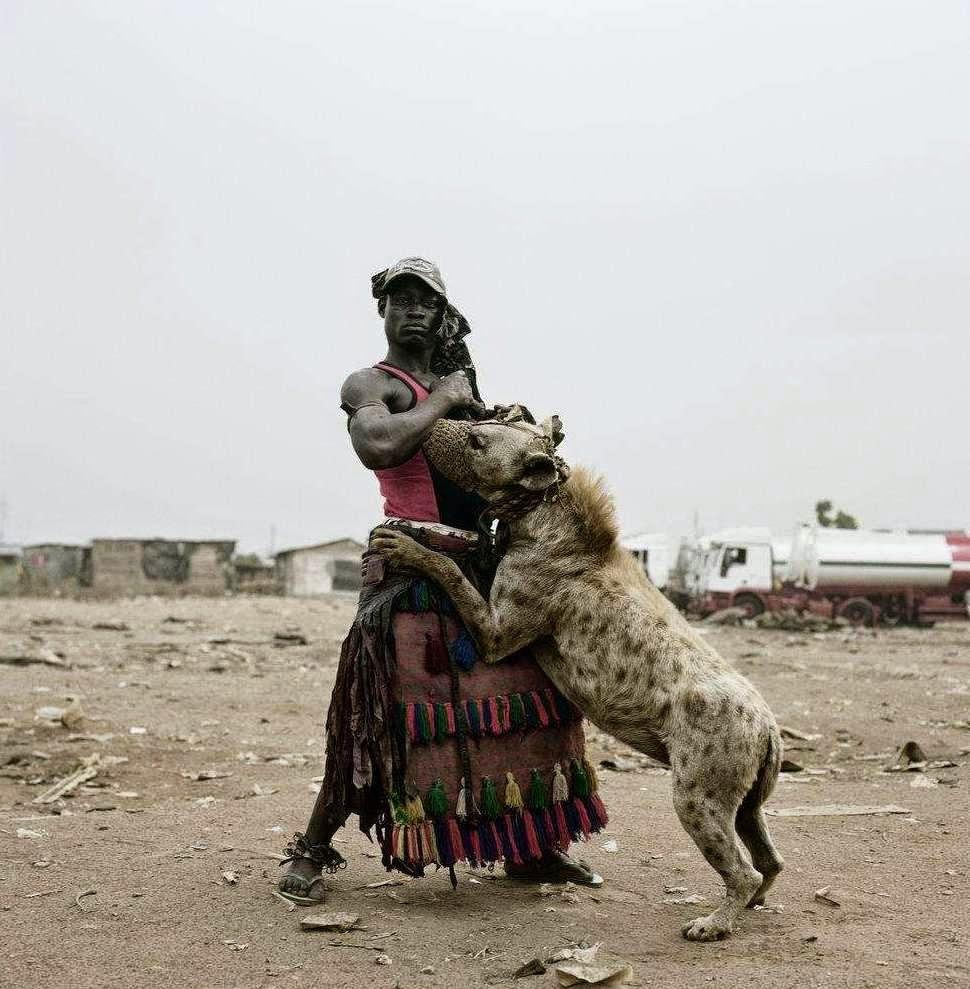 10 Binatang Peliharan Unik Dan Aneh Unik News