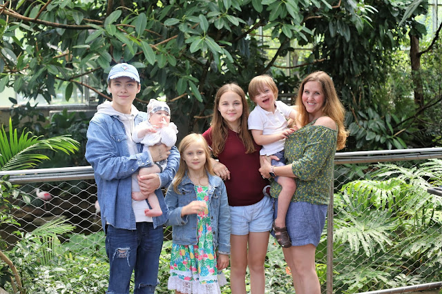 Pittsburgh Family Blog
