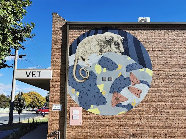 Albury Street Art   Kirrily Anderson