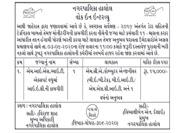 Halol Nagarpalika MIS/IT Expert Recruitment 2020