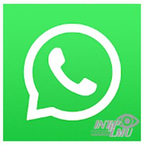 Kirim Foto Dengan Kualitas Asli Tanpa Kompress di Whatsapp