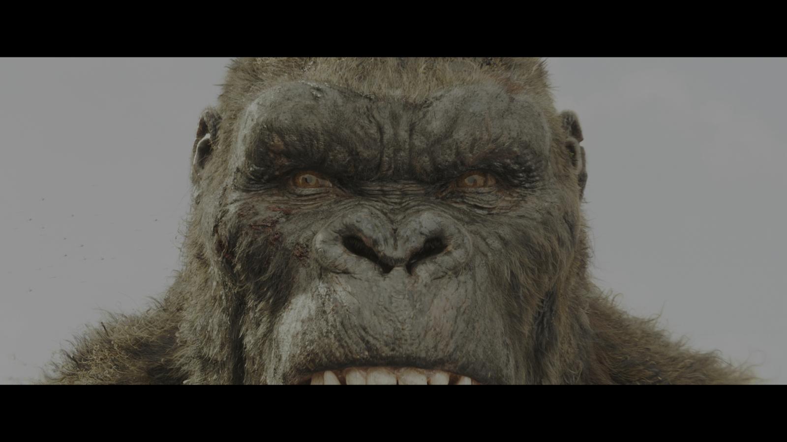 Kong: La isla Calavera (2017) 4K UHD Blu-Ray Completo captura 4