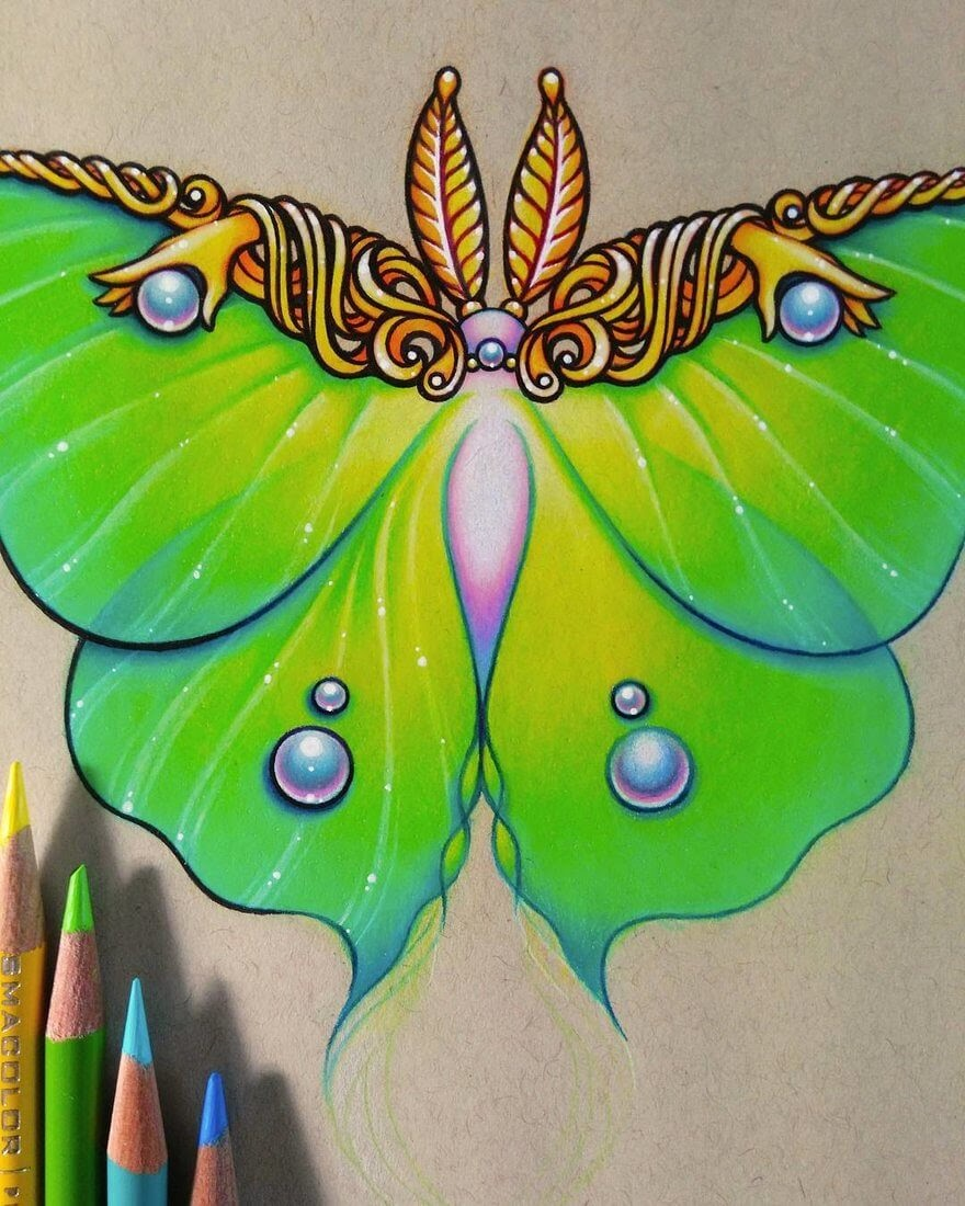 02-Luna Moth-WIP-Danielle-Washington-Brightly-Colored-Pencil-Drawings-www-designstack-co