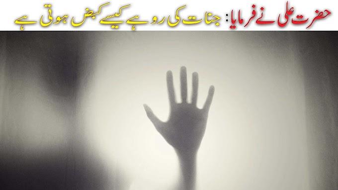 Hazrat Ali said: How do giants die || shahmeer blog tv