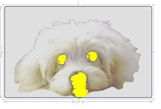 Screenshot vom Silhouette Studio und Hundefoto