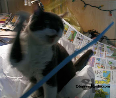 Feral Friday: May Bloopers Plus CK's a Rock Star!