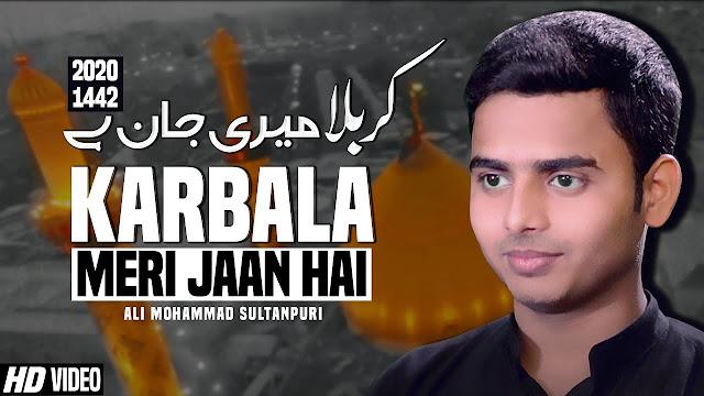 Nohay 2020  Karbala Meri Jaan Hai  Ali Mohammad Sultanpuri Noha  New Noha 2020  New Noha Karbala