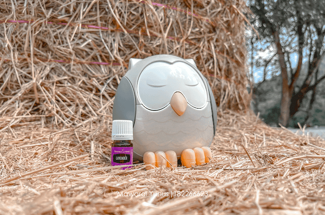 Review Diffuser Feather The Owl Dari Young Living