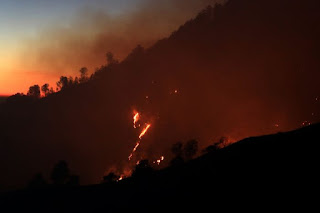 Kebakaran di Gunung Batukaru, Tabanan