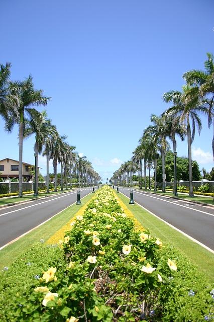 Kalakaua Avenue, Tourism, Tourist, Travel, Beaches, Forest, Nature, Seashore, Tourist Attraction, Mountain, Best Tourist Attractions,