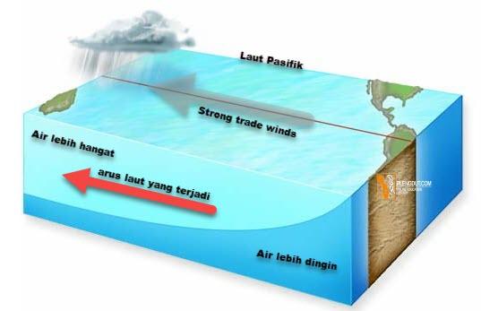 La Niña Upwelling di lepas pantai barat Amerika Selatan membawa air dingin ke permukaan. Tekanan barometrik tinggi di Pasifik tenggara. Musim hujan yang terkait dengan Samudra Hindia terjadi. Badai terjadi di lepas pantai timur Amerika Serikat.