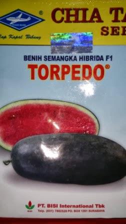 Semangka, Torpedo, Manis, Kulit Hitam, Inul, Daging Merah, Benih, Bibit, Petani, Tanaman, Cap Kapal Terbang