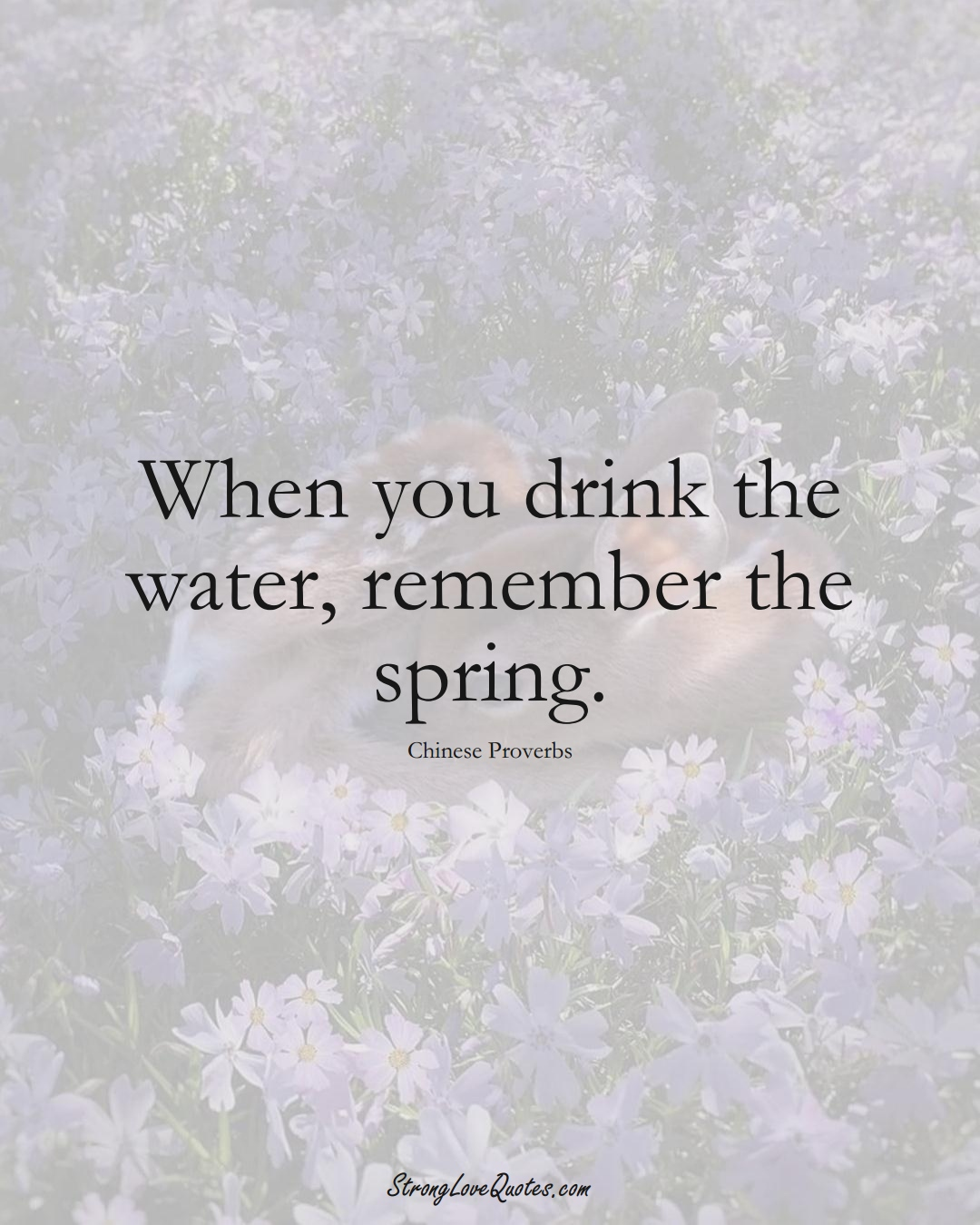 When you drink the water, remember the spring. (Chinese Sayings);  #AsianSayings