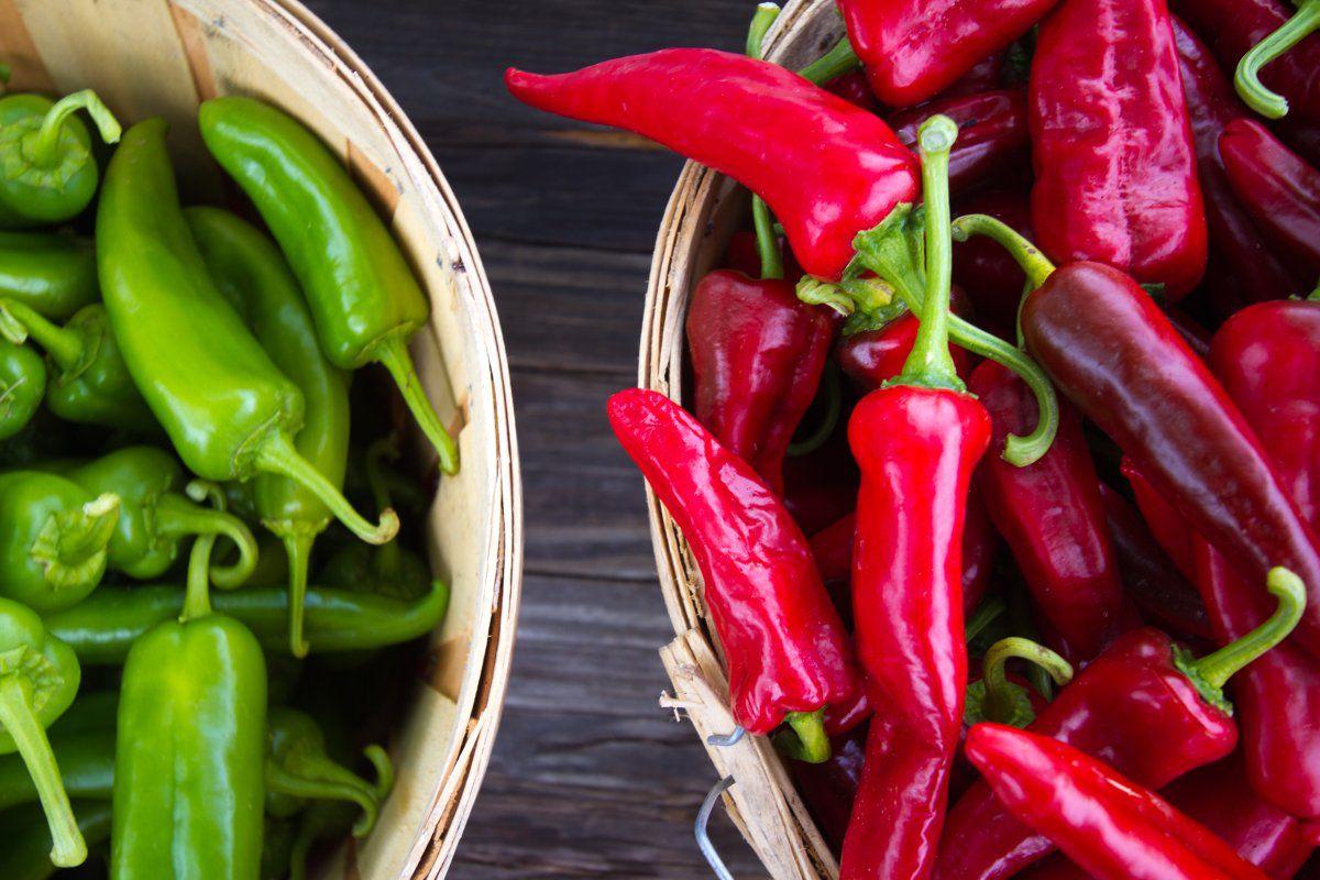 పచ్చి మిర్చి ఆరోగ్యానికి మంచిదా లేక పండు మిర్చి మంచిదా ? - Mirchi, Mirapa & Health, Red Chilli and Green Chilli