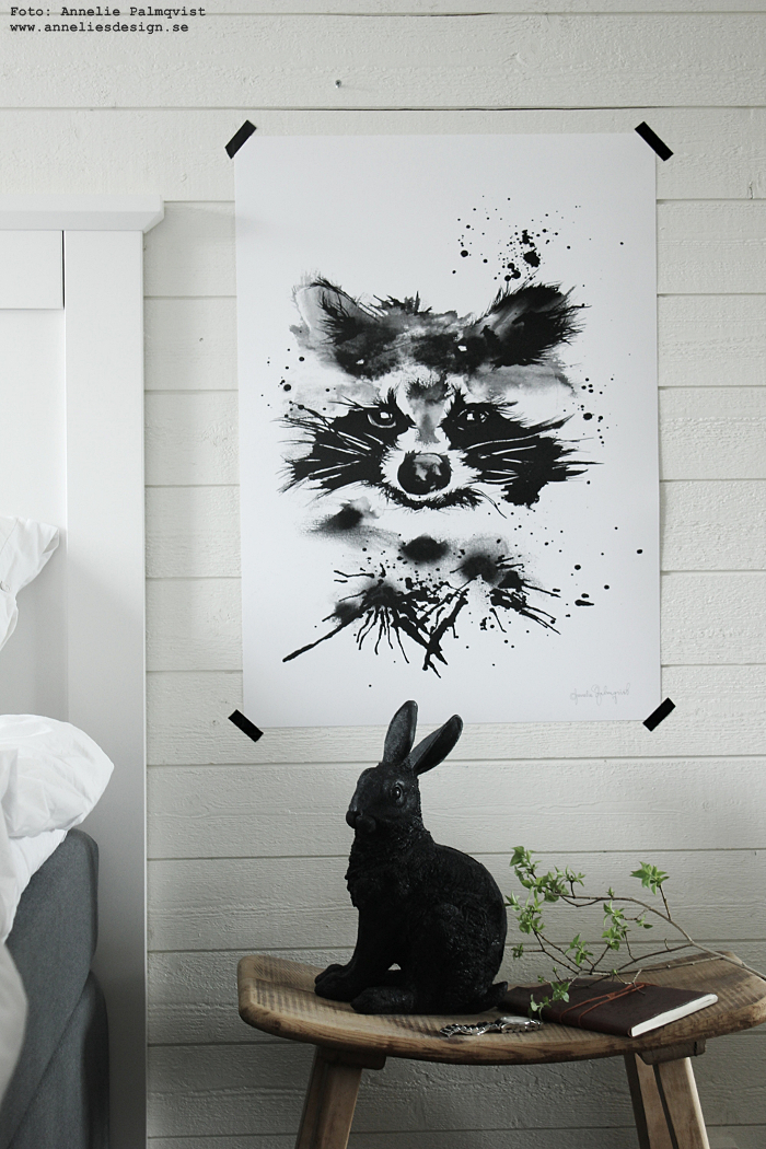 tvättbjörn, tvättbjörnar, poster, posters, konsttryck, print, prints, tavla, tavlor, barnrum, barnrummet, svart och vitt, svartvit, svartvita, vitt, vit, liggande panel, webbutik, webbutiker, webshop, inredning, sovrum, sovrummet, kanin, kaniner, sparbössa, annelies design,