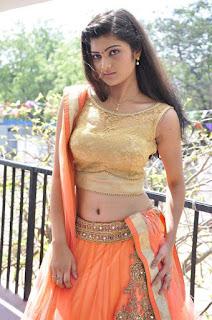 Actress Pallavi Naidu Stills in Half Saree at Lord Shiva Creations New Movie Launch 0013.jpg