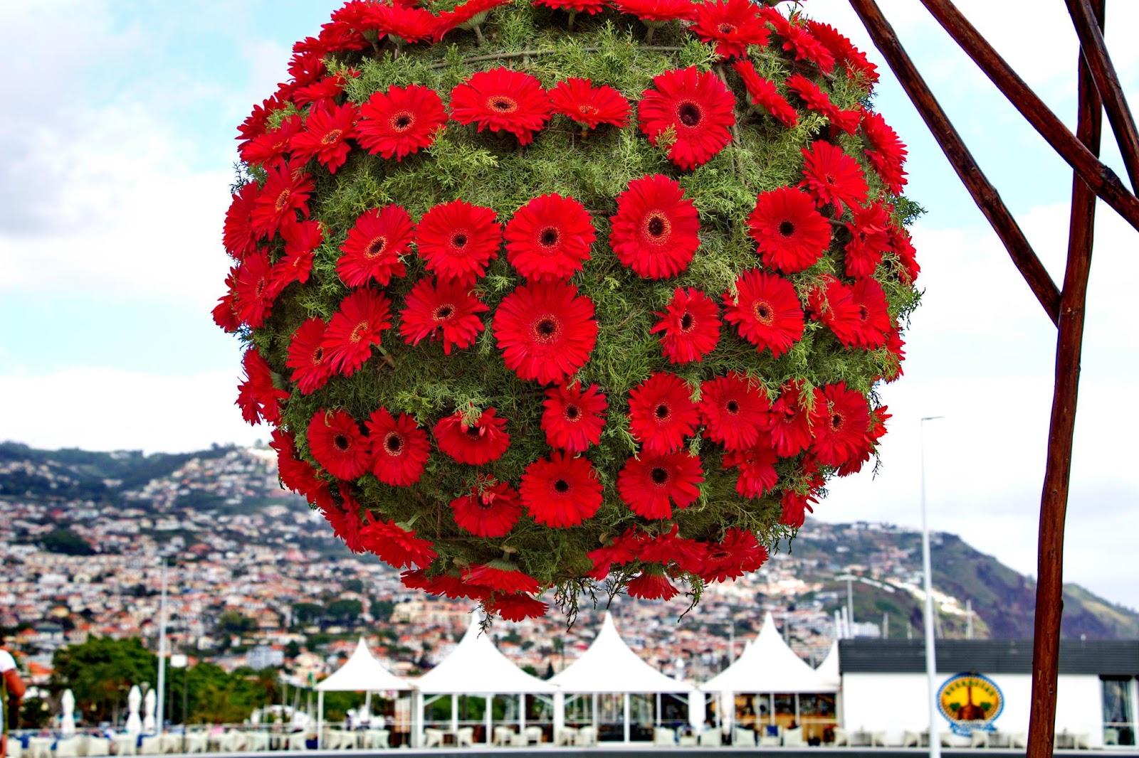 a bola florida