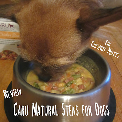 The Chesnut Mutts Review: Caru Natural Stews for Dogs