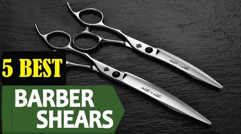 Top 5 Best Professional Hair Cutting Shears Reviews 2019