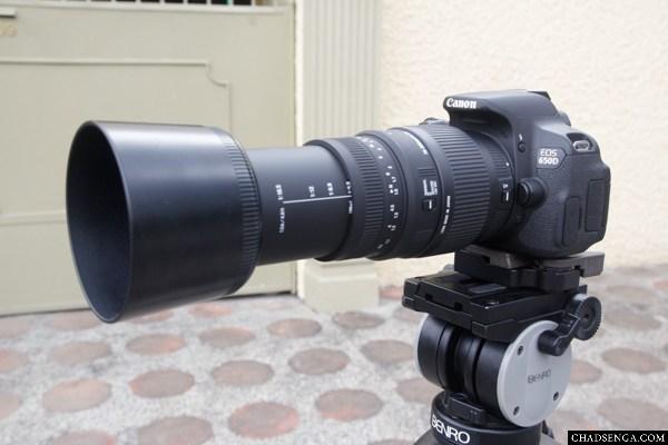Sigma 70-300mm F4-5.6 DG Macro Review