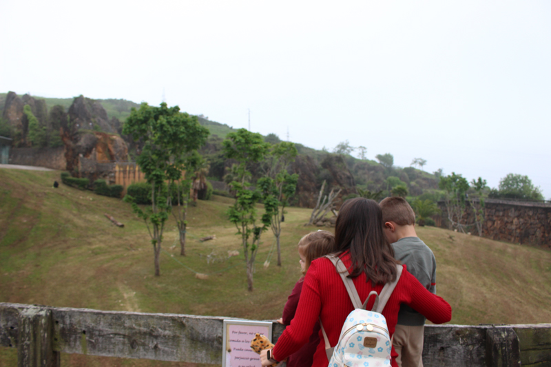 Parque natural Cabárceno