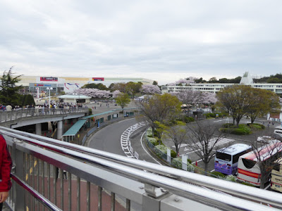 【大阪府吹田市】万博記念公園桜まつり